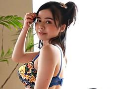Aziatisch, Japaans