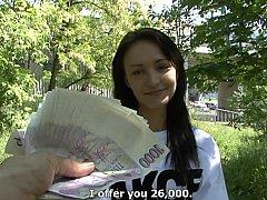 Bruinharig, Tsjechisch, Europees, Geld, Gezichtspunt, Openbaar, Kut duiken, Rijden