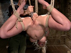 Stick In Tied Bitche's Holes